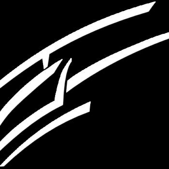 Heliteam Lungau Logo Weiß